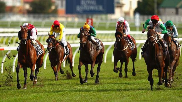 Best Horse Racing Betting Sites in the UK