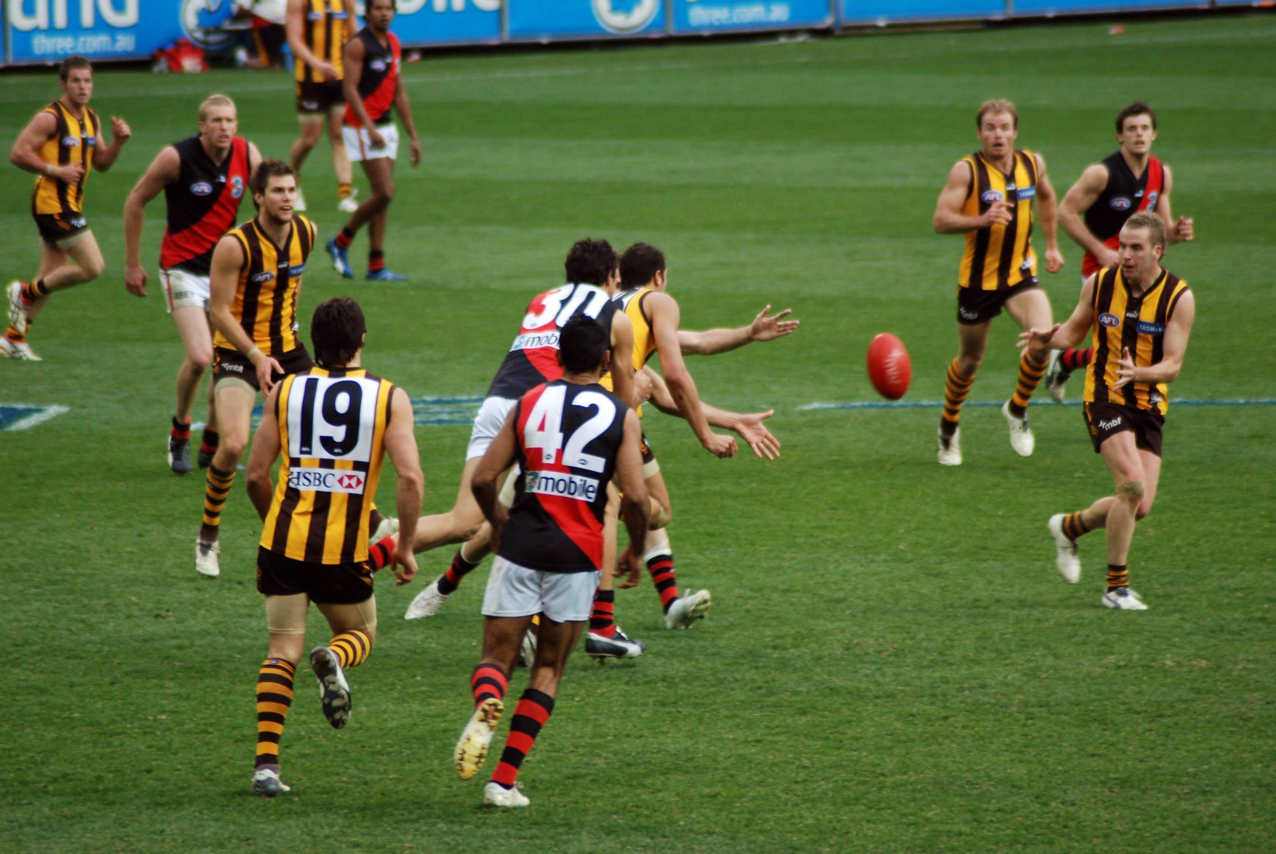 AFL Betting Tips, Odds, Predictions, and More